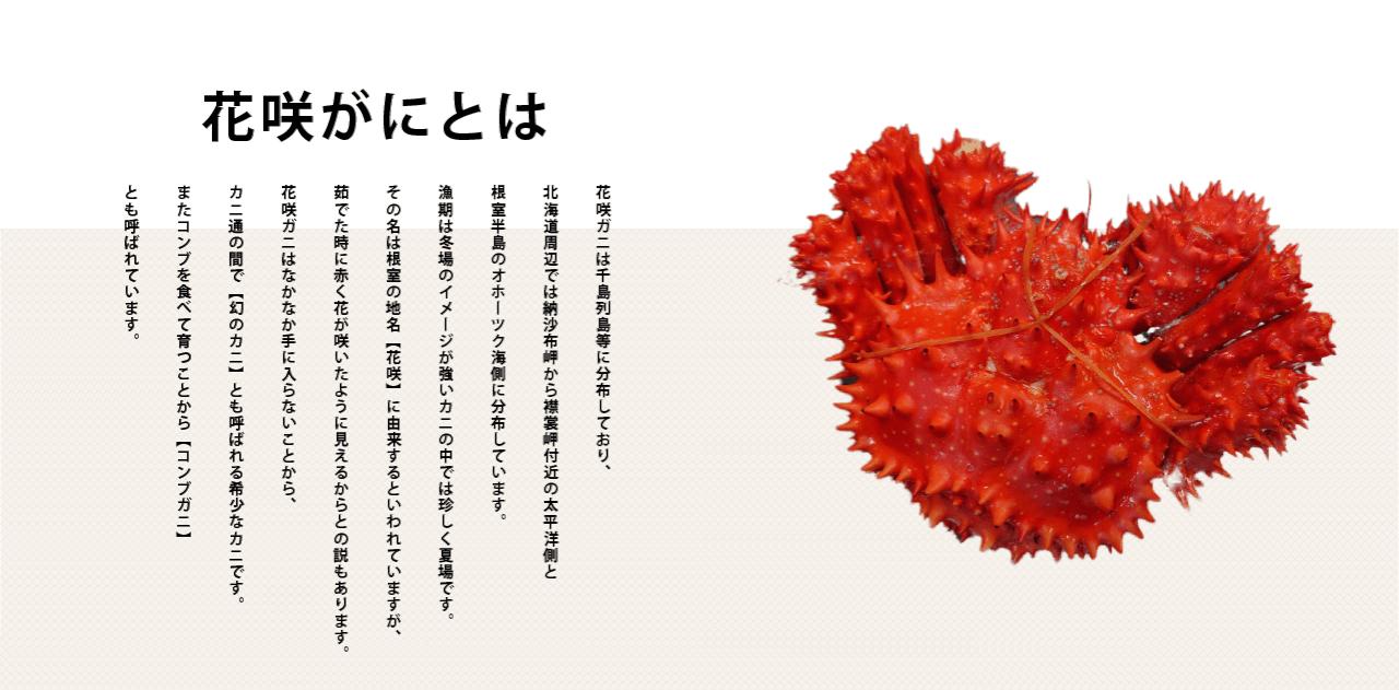 瀬川食品 -SegawaFoods-北海道の食の恵み厚岸,昆布巻,佃煮